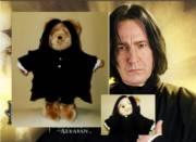 Cuddly Prof. Snape Teddy Bears_image